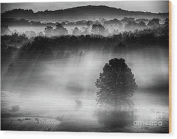 Morning Fog Wood Print by Nicki McManus