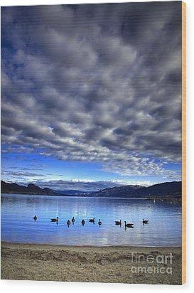 Morning Light On Okanagan Lake Wood Print by Tara Turner