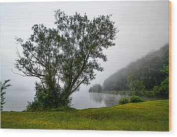 Morning Mist Wood Print by Brian Stevens