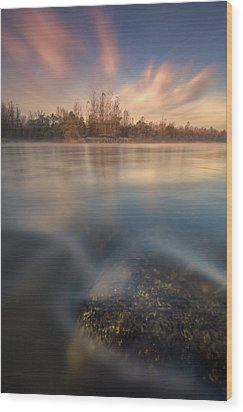 Wood Print featuring the photograph Morning On River by Davorin Mance