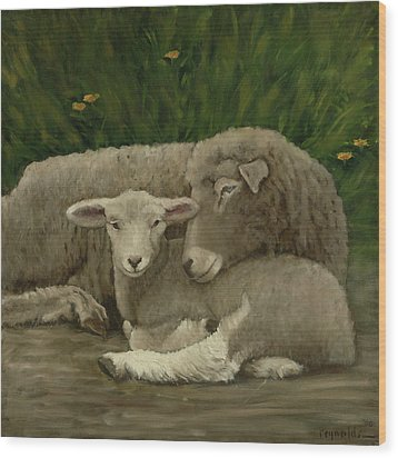 Mother And Lamb Wood Print by John Reynolds