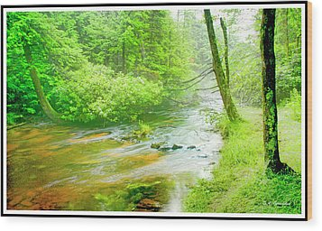 Mountain Stream, Pocono Mountains, Pennsylvania Wood Print by A Gurmankin