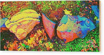 My Back Yard Rocks Wood Print by Ann Johndro-Collins