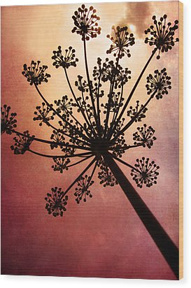Nature's Fireworks Wood Print by Amy Tyler