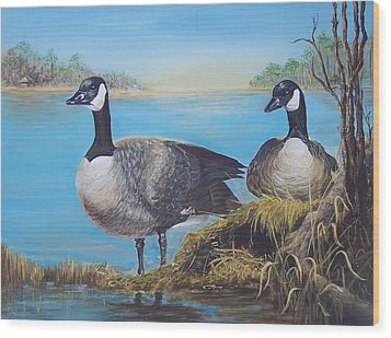Nesting At Millsboro Pond Wood Print