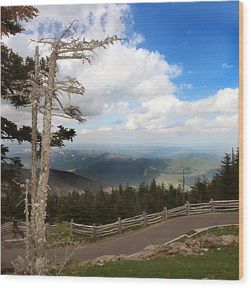 North Carolina High Country Wood Print by Joseph G Holland