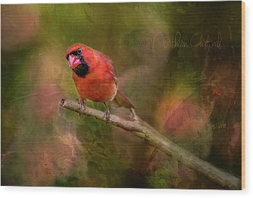 Northern Cardinal Wood Print by Irwin Seidman