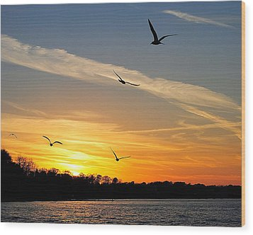 November Sunset Wood Print by Frozen in Time Fine Art Photography