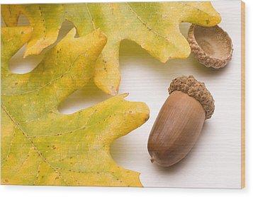 Oak Leaves And Acorns Wood Print by Utah Images