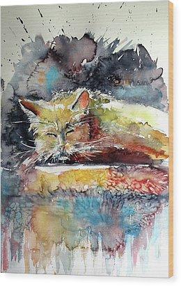 Old Cat Resting Wood Print by Kovacs Anna Brigitta