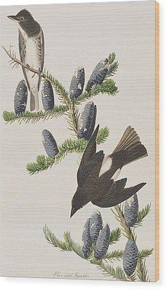 Olive Sided Flycatcher Wood Print by John James Audubon
