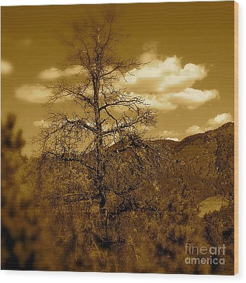 On To Pike's Peak Wood Print by Sergio Geraldes