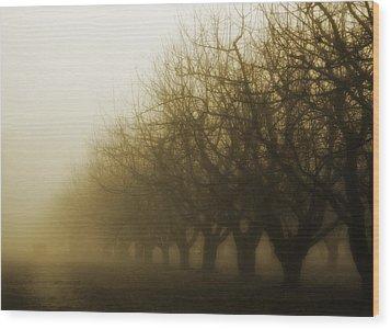 Orchard In Fog Wood Print by Rebecca Cozart
