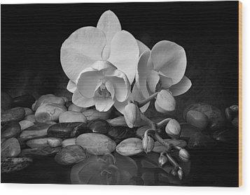 Orchid - Sensuous Virtue Wood Print by Tom Mc Nemar