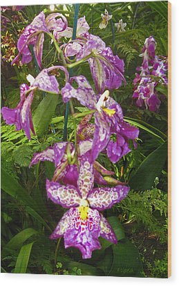 Orchids - Purple Polka Dots Wood Print by Kerri Ligatich