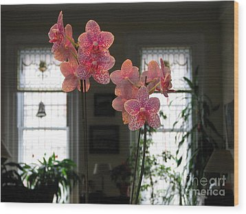 Wood Print featuring the photograph Orchids In The Parlor by Erik Falkensteen