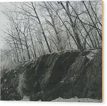 Wood Print featuring the photograph Out Of The Rocks by Ellen Levinson