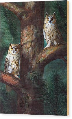 Owls In Moonlight Wood Print by Frank Wilson