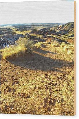 Painted Desert 2 Wood Print by Patricia Bigelow
