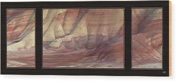 Wood Print featuring the photograph Painted Hills Triptych by Leland D Howard