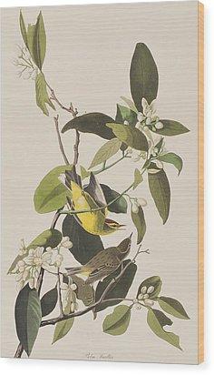 Palm Warbler Wood Print by John James Audubon