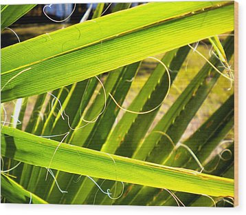 Wood Print featuring the painting Palmetto 3 by Renate Nadi Wesley
