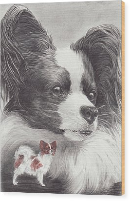 Papillon Wood Print by Laurie McGinley