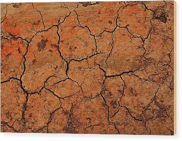 Parched Wood Print by Dean Harte