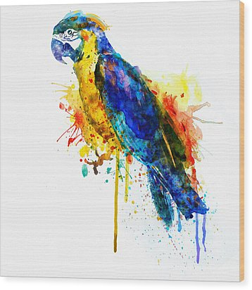 Parrot Watercolor  Wood Print