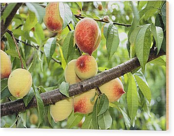 Wood Print featuring the photograph Peaches by Kristin Elmquist