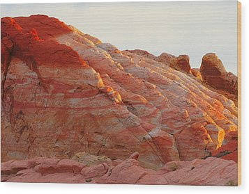 Petrified Fire Wood Print by Christine Till
