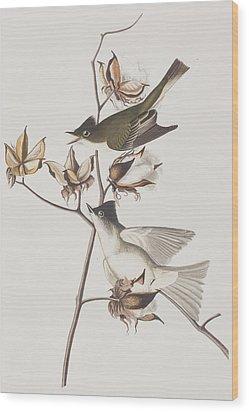 Pewit Flycatcher Wood Print by John James Audubon