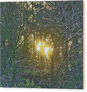 Photo Winter Solstice Dawn Wood Print by Ray  Petersen