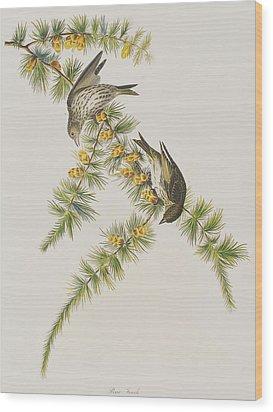 Pine Finch Wood Print by John James Audubon