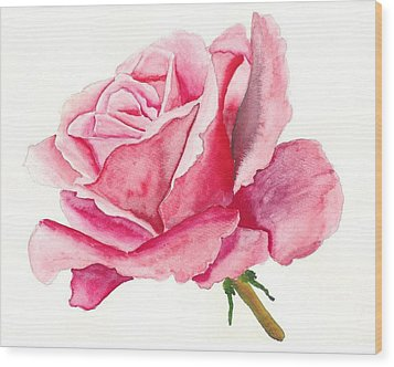 Pink Rose Wood Print by Robert Thomaston