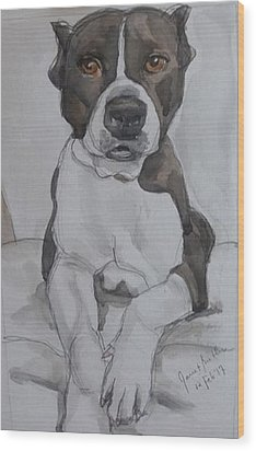 Pit Bull Wood Print by Janet Butler