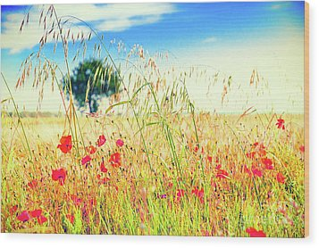 Wood Print featuring the photograph Poppies With Tree In The Distance by Silvia Ganora