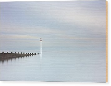 Wood Print featuring the photograph Portobello Seascape by Grant Glendinning