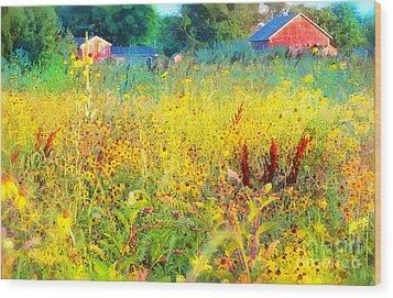 Prairie Farm House Wood Print