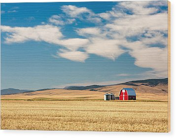 Prairie Red Wood Print by Todd Klassy