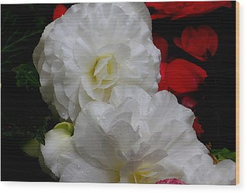 Wood Print featuring the photograph Pretty White by Ivete Basso Photography