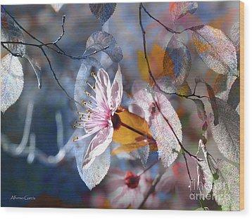 Primavera Wood Print by Alfonso Garcia