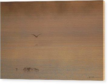 Primeval Dawn Wood Print