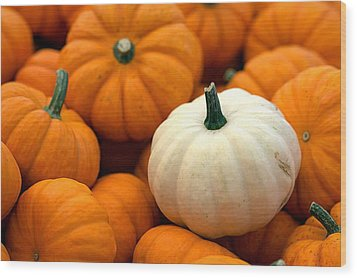 Pumpkins Wood Print by Joseph Skompski
