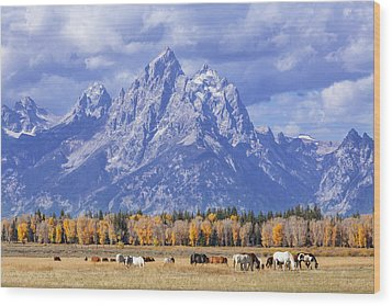 Purple Mountains Majesty Wood Print