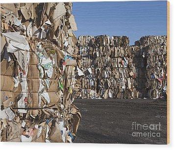 Recycling Facility Wood Print by Paul Edmondson