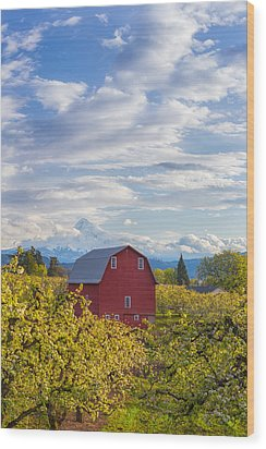 Wood Print featuring the photograph Red Barn And Mt Hood by Patricia Davidson