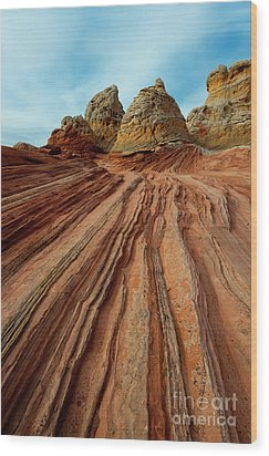 Wood Print featuring the photograph Red Desert Lines by Mike Dawson