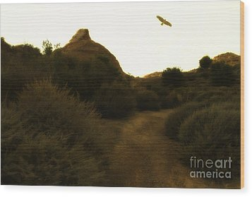Red-tailed Hawk At Coyote Hills California . 7d11018 Wood Print by Wingsdomain Art and Photography