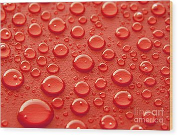 Red Water Drops Wood Print by Blink Images